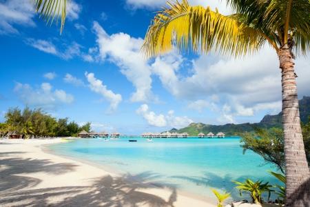 Photo pour Beautiful beach on Bora Bora island in French Polynesia - image libre de droit