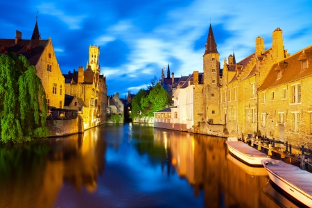 Night view of canal in Bruge mural