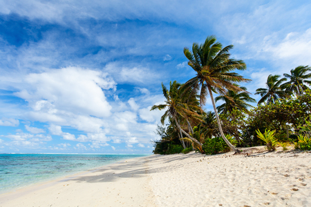 Foto de Beautiful tropical beach with palm trees, white sand, turquoise ocean water and blue sky at Cook Islands, South Pacific - Imagen libre de derechos