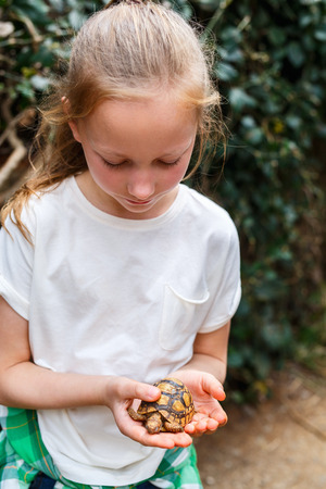 Photo for Portrait of cute little girl holding baby tortoise - Royalty Free Image