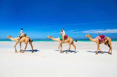 Foto de Family mother and kids riding camels at  tropical white sand beach - Imagen libre de derechos
