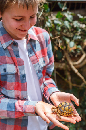 Photo for Portrait of cute boy holding baby tortoise - Royalty Free Image