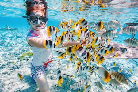 Photo pour Woman snorkeling in clear tropical waters among colorful fish - image libre de droit