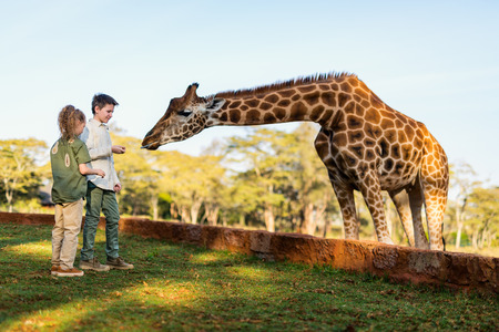 Photo for Kids brother and sister feeding giraffes in Africa - Royalty Free Image