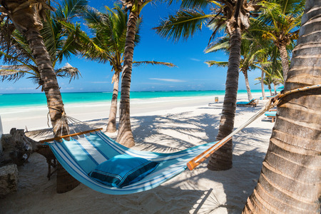 Photo pour Perfect tropical beach with palm trees and hammock - image libre de droit