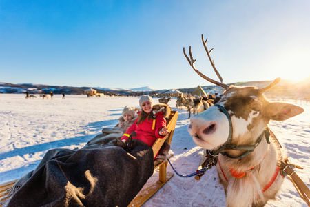 Photo for Family of mother and her daughter at reindeer safari on sunny winter day in Northern Norway - Royalty Free Image
