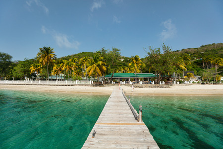 Photo for Tranquil tropical beach with white sand, palm trees and turquoise Caribbean sea water on Bequia island in St Vincent and the Grenadines - Royalty Free Image