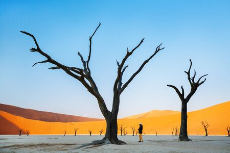Photo for Young girl among dead camelthorn trees surrounded by red dunes in Deadvlei in Namibia - Royalty Free Image