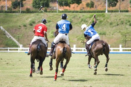 Image of polo players in action.