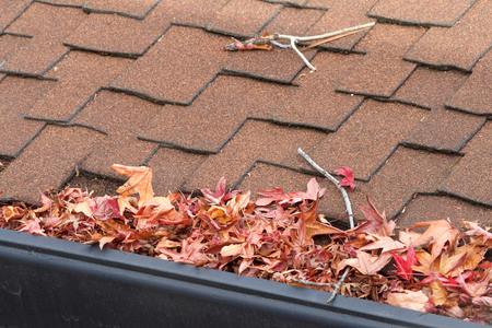 Foto de Rain gutters on roof without gutter guards, clogged with leaves, sticks and debris from trees. Increased risk of clogged gutters, rusting, increased need for maintenance and is a potential fire hazard - Imagen libre de derechos