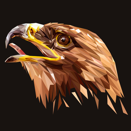 Eagle animal low poly design. Triangle vector illustration.