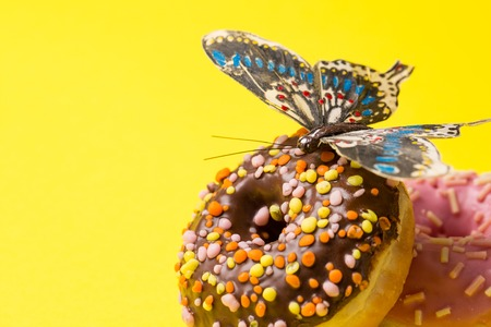Photo for Sprinkled Pink and chokolate Donut. Frosted sprinkled donuts with butterfly on yellow background. Copy space at the left - Royalty Free Image