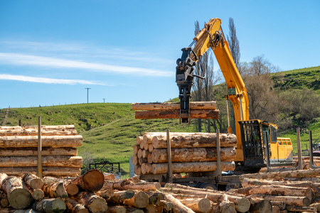 Photo pour Logging machines load up a truck with logs at a forestry site - image libre de droit
