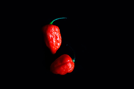 Photo pour Two Red Bhoot Jolokia Spicy ghost pepper isolated in black background with space for text - image libre de droit