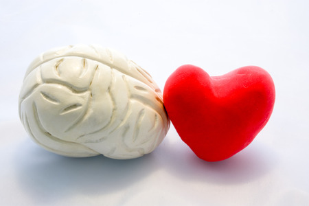 Photo pour Red card heart shape and figure of human brain standing next to next to each other on white background. Connection heart and brain in couple or choice for who to follow, or their interaction in body - image libre de droit