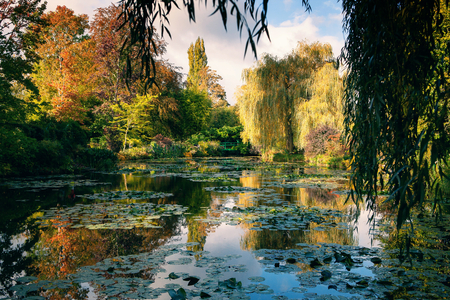 Photo for Claude Monet the garden in autumn, water lilies in the lake on a Sunny day - Royalty Free Image
