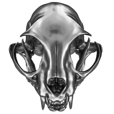 Photo pour 3D render of metallic Cat Skull isolated on white - image libre de droit
