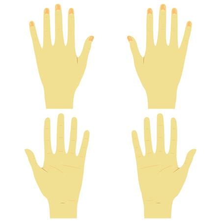 Ilustración de Hands front and back right and left - Imagen libre de derechos