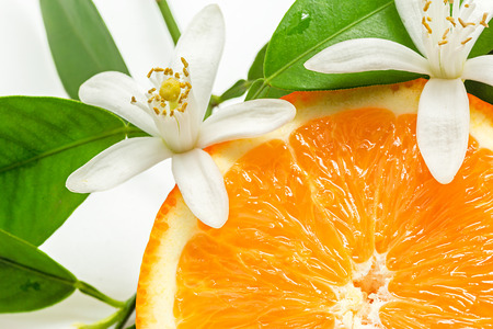 Photo pour Close up of  fresh orange fruit with leaves and blossom - image libre de droit