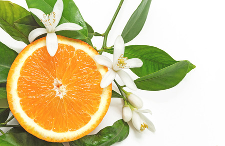 Photo for Half Orange Fruit with leaves and blossom isolated on white background - Royalty Free Image