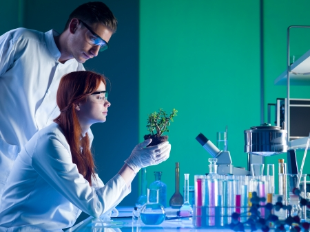 Foto de side view of biochemists studying a young green plant in a laboratory - Imagen libre de derechos