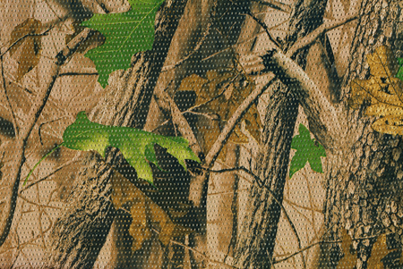Photo for Closeup camouflage pattern for hiding, disguising. Detailed texture of dried leaf - Royalty Free Image