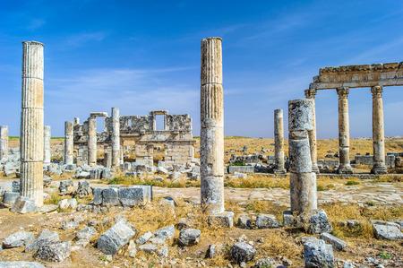 Photo pour Ruins of the columns of Apamea, Syria. - image libre de droit