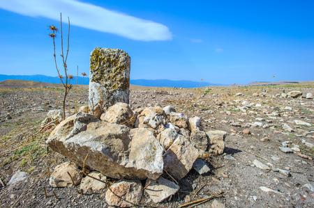 Photo pour Nature and stones of Apamea, Syria - image libre de droit