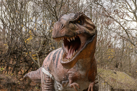 Photo for BRATISLAVA, SLOVAKIA - OCT 18, 2015: Tyrannosaurus Rex head in DinoPark in Bratislava, Slovakia. Tyrannosaurus is a genus of coelurosaurian theropod dinosaur - Royalty Free Image
