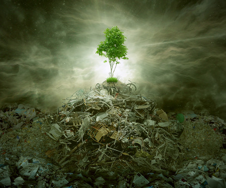 Foto de Green concept as a leaf tree on top of mountain heap of garbage with roots as an environment or conservation icon for waste management or new healthy beginning. - Imagen libre de derechos