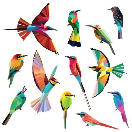 Photo pour Birds-set of colorful meropidae birds low poly design isolated on white background. - image libre de droit