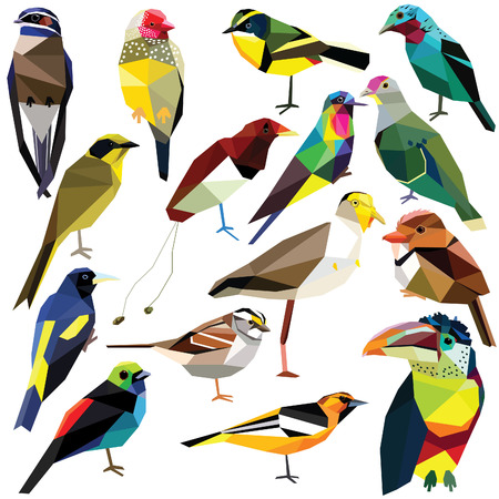 Birds-set colorful birds low poly design isolated on white background Finch,Oriole,Puffbird,Aracari,Hummingbird,Paradise bird,Tyrant,Lapwing,Tanager,Dove,Cotinga,Treeswift,Sparrow,Cacique,Honeyeater