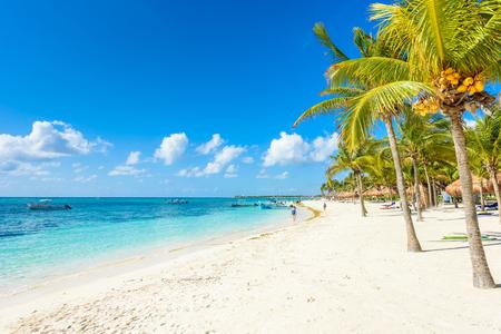 Photo for Akumal beach - paradise bay  Beach in Quintana Roo, Mexico - caribbean coast - Royalty Free Image