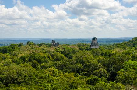 Photo pour Tikal - Maya Ruins in the rainforest of Guatemala - image libre de droit