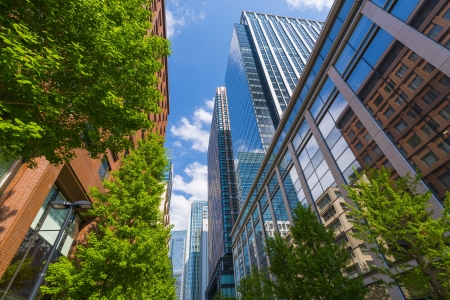 Photo for Green and Office Buildings - Royalty Free Image