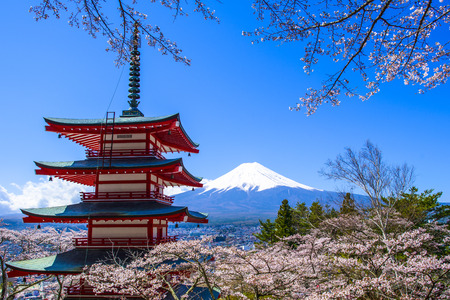 Photo pour Chureito Pagoda with sakura & Beautiful Mt.fuji View - image libre de droit