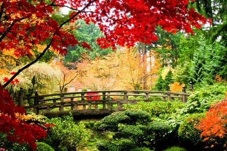 Photo for A bridge in an Asian garden during Fall season. - Royalty Free Image