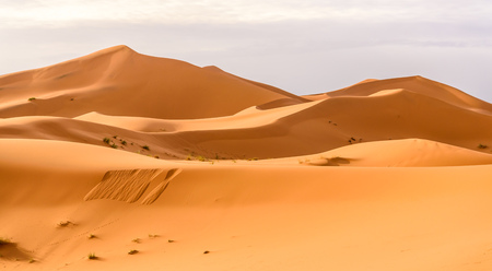 Photo for Erg Chebbi sand dunes of the Moroccan desert - Royalty Free Image