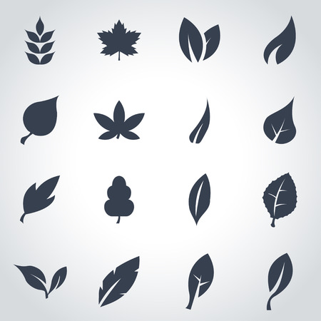 Illustration for Vector black leaf icon set on grey background - Royalty Free Image