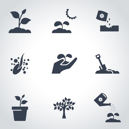 Ilustración de Vector black growing icon set. Growing Icon Object, Growing Icon Picture, Growing Icon Image - stock vector - Imagen libre de derechos