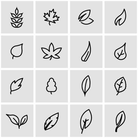 Illustration for Vector line leaf icon set. Leaf Icon Object, Leaf Icon Picture, Leaf Icon Image - stock vector - Royalty Free Image
