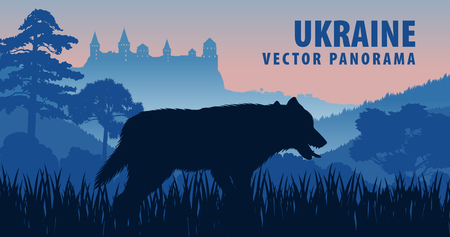 vector panorama of Ukraine with gray wolf