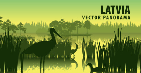 vector panorama of Latvia with black stork