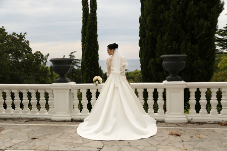 Foto de fashion outdoor photo of gorgeous bride with dark hair wears elegant wedding dress, posing in park - Imagen libre de derechos