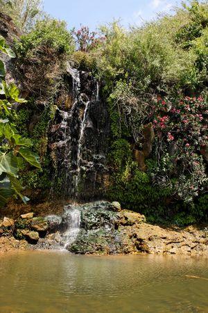 Waterfall falls over black basalt rocks among bushes and flowers