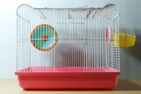Photo for hamster wheel in old and empty hamster white and pink cage on wood desk - Royalty Free Image