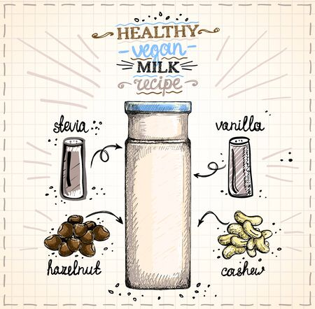 Illustration for Healthy vegan nut milk recipe illustration, raw cashew and hazelnut milk in bottle with ingredients, hand drawn graphic sketch - Royalty Free Image