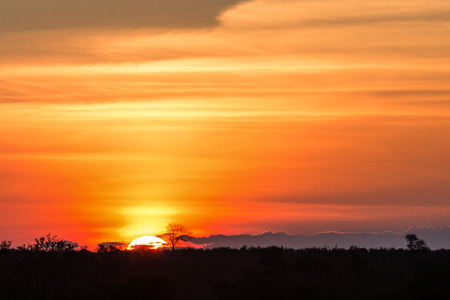 Foto de Gorgeous African Sunset in Kruger National Park - Imagen libre de derechos