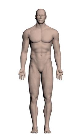 Illustration pour Vector illustration of a realistic man. Polygon. 3D. - image libre de droit
