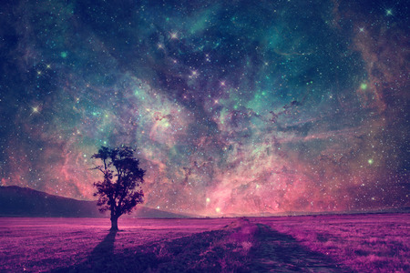Foto de red alien landscape with alone tree silhouette in purple field- elements of this image are furnished by NASA - Imagen libre de derechos